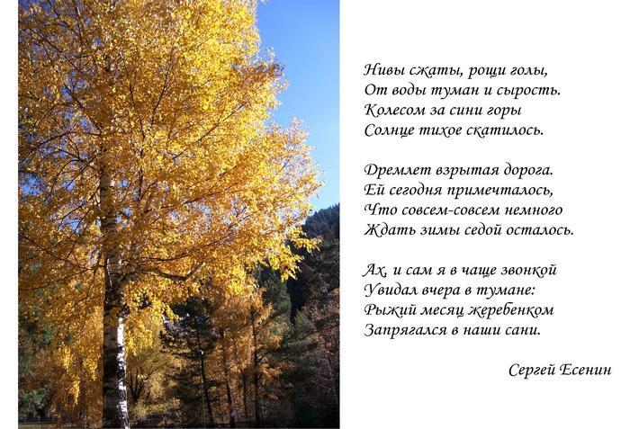 фотографий стихи русских классиков про осень мой защитник, желаю