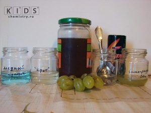 опыт с глюкозой в меде и винограде