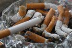 Миниатюра к статье Делаем в домашних условиях интересный опыт о вреде курения